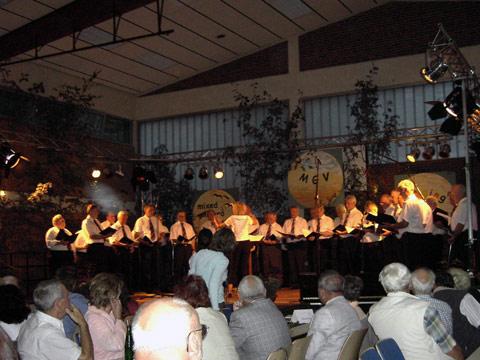 Sommernachtsfest (44)