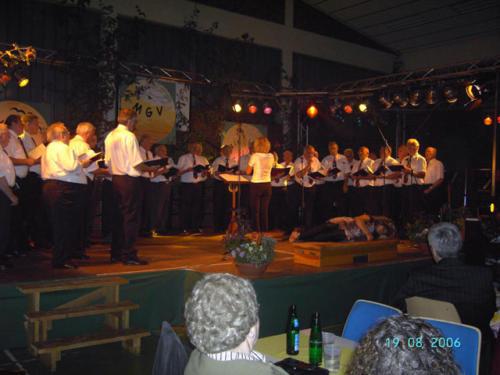 Sommernachtsfest (54)