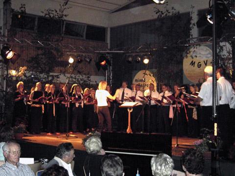 Sommernachtsfest (56)