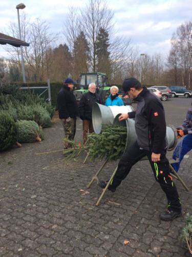 Weihnachtsbaumverkauf (2)