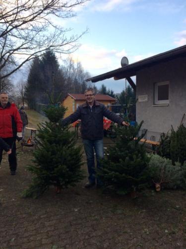Weihnachtsbaumverkauf (4)
